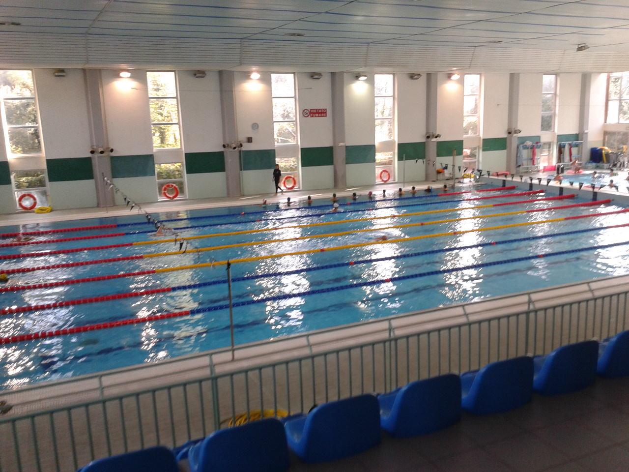 Difendiamo la piscina di viareggio nuoto politica - Piscina viareggio ...