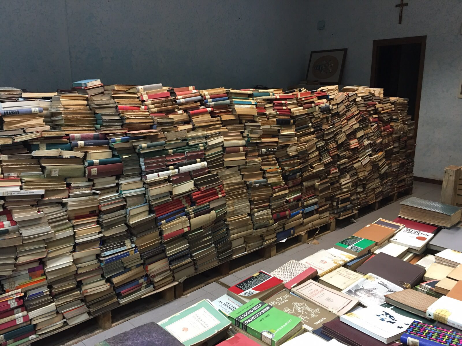 Libri e giornali in sicurezza e due nuove aule studio a Viareggio