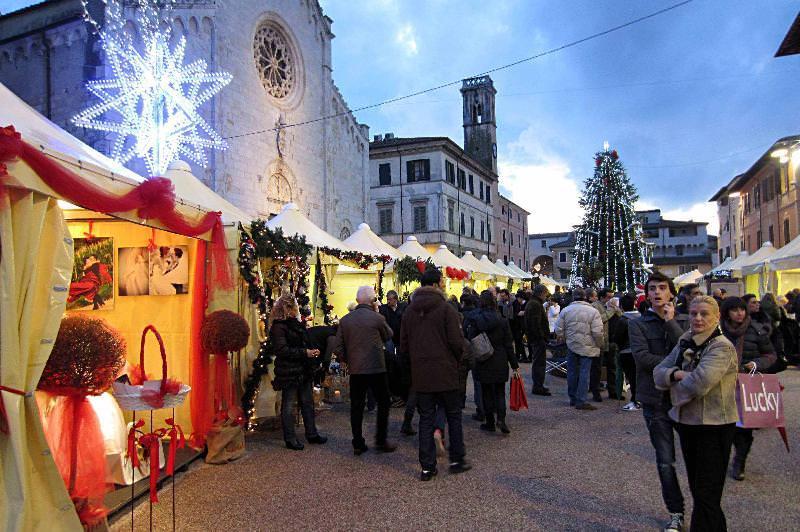 Conto alla rovescia per l'accensione dell'albero di Natale a Pietrasanta