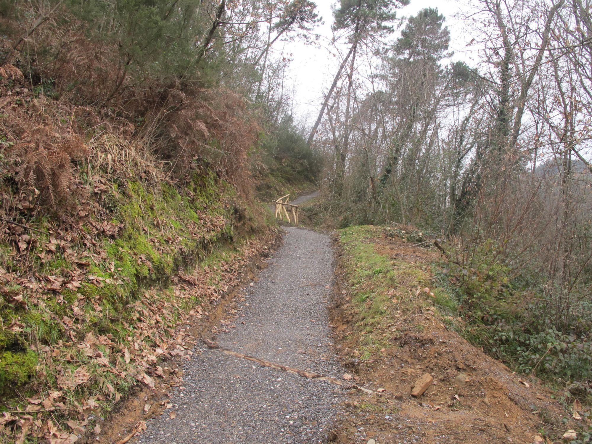A marzo inaugurazione del tratto di via Francigena che passa da Massarosa