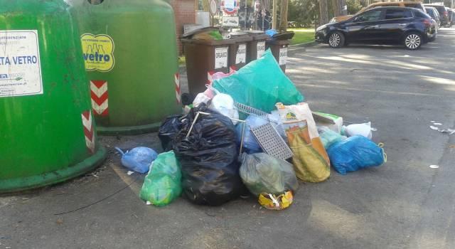 A Viareggio sacchetti di rifiuti abbandonati in mezzo alla strada