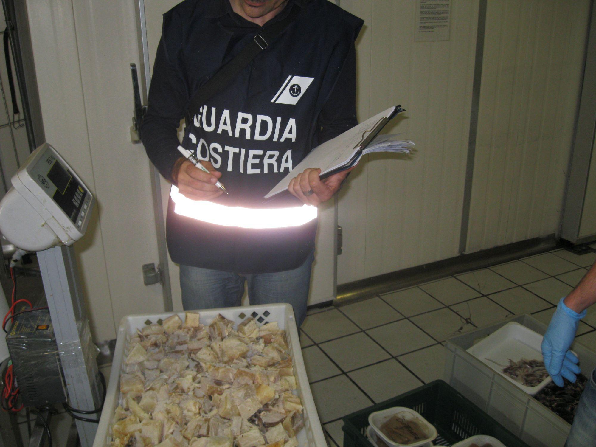 """Operazione """"Gladius"""". Due tonnellate di prodotti ittici sequestrati e 85mila euro di sanzioni"""