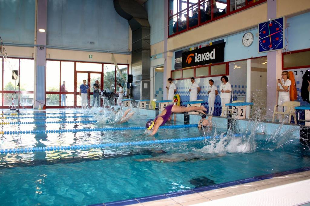 Nuoto il circolo nuoto lucca trionfa al trofeo campus maior nuoto sport - Piscina comunale empoli ...