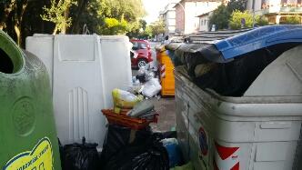 Cassonetti pieni, degrado e sporcizia in Pineta. La segnalazione