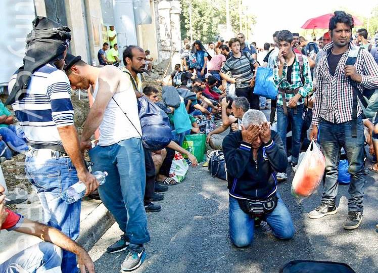 """Fdi: """"Basta col business sui migranti"""""""