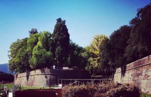 murabilia mura lucca