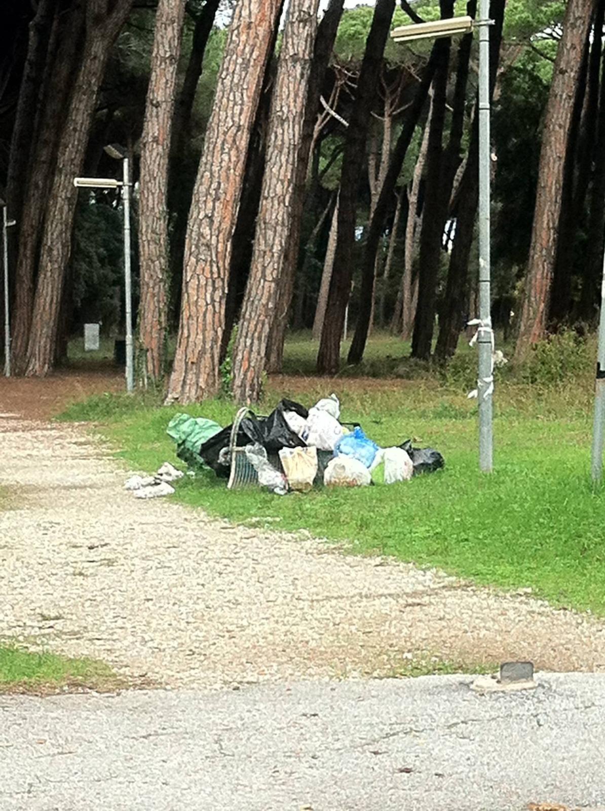 Sacchi di immondizia abbandonati sporcizia e degrado al marco polo cronaca cronaca viareggio - Sacchi di terra per giardino ...