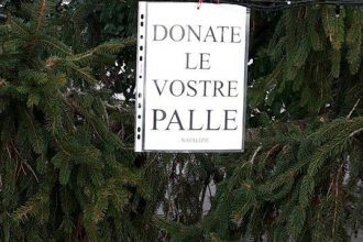 donate_palle