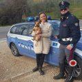 cane salvato stradale