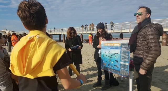 Sulla spiaggia in sicurezza: al via i progetti scuola-balneari