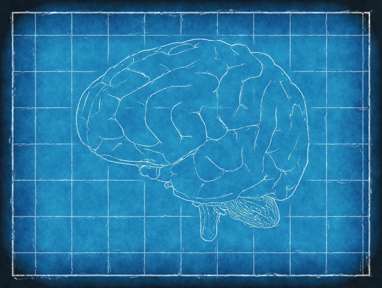 Fibromialgia, malattia invisibile ma non immaginaria