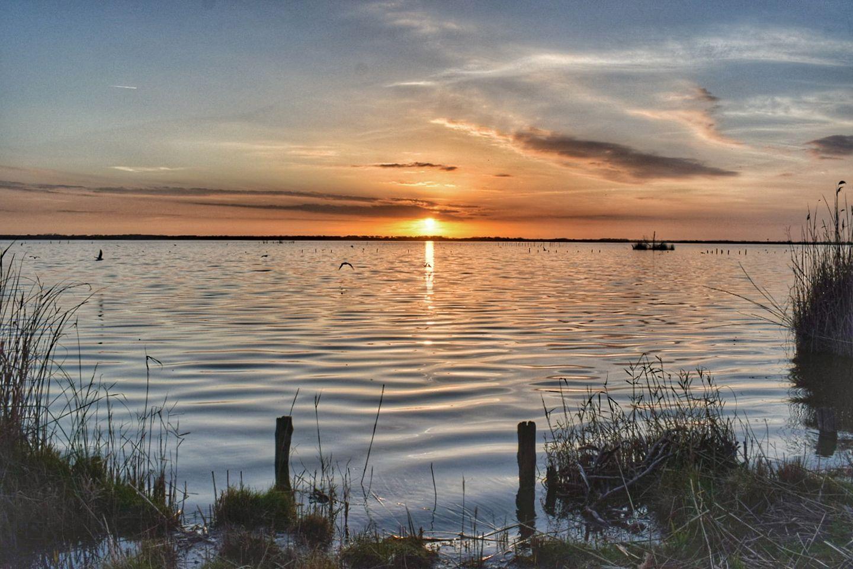 Il Lago di Massaciuccoli si candida a Patrimonio dell'UNESCO
