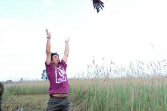 liberazione uccelli
