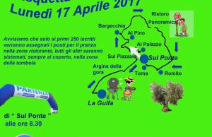 locandina 2017 verde