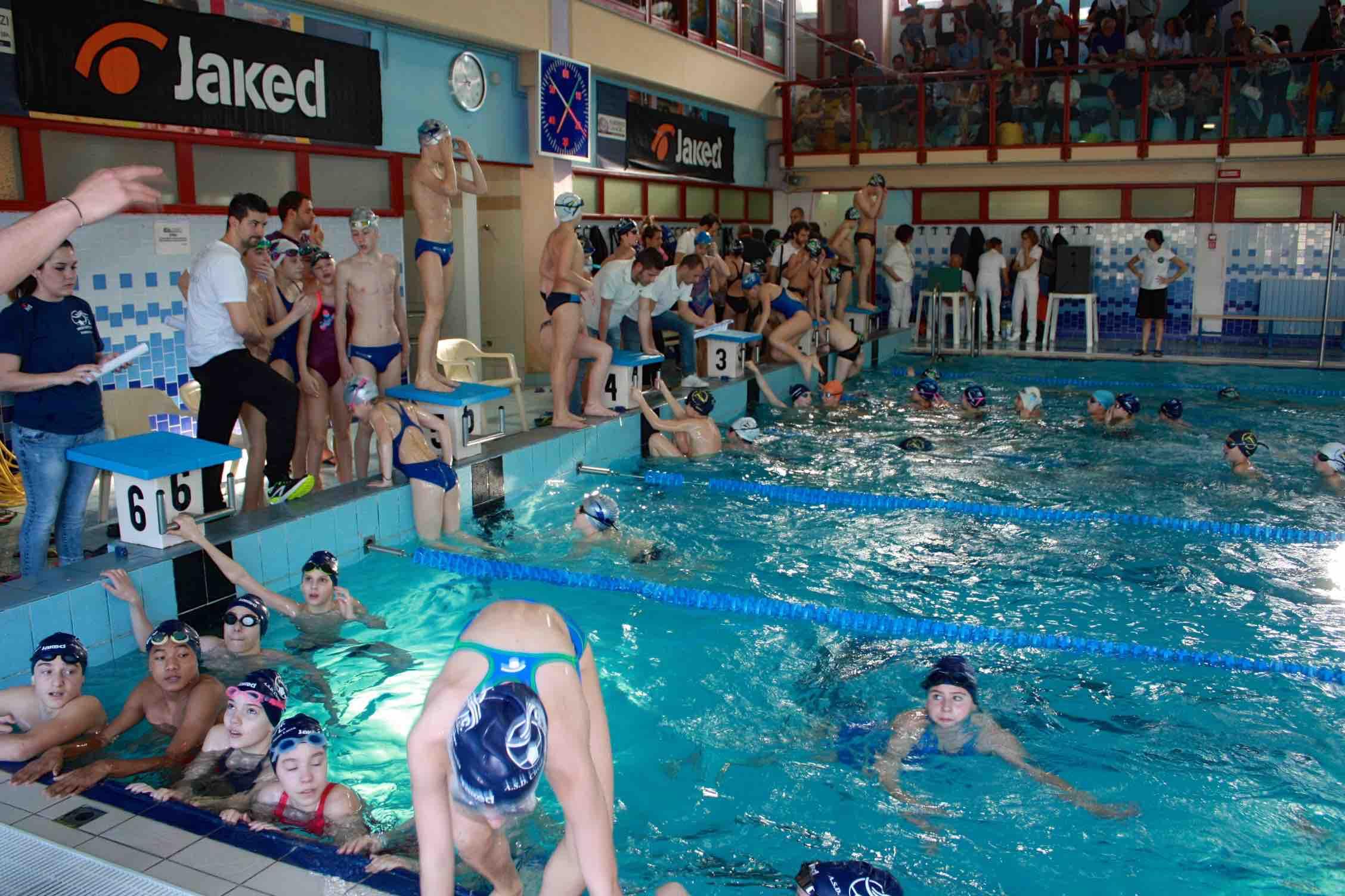 Oltre 300 iscritti per il trofeo di nuoto a camaiore - Nuoto in piscina ...