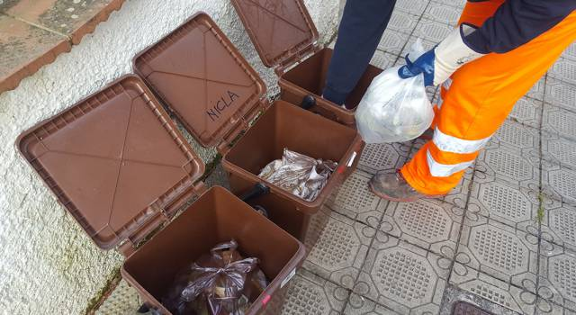 """11mila bidoncini coi rifiuti sbagliati, Sea in tilt: """"I cittadini hanno usato il calendario Ersu"""""""