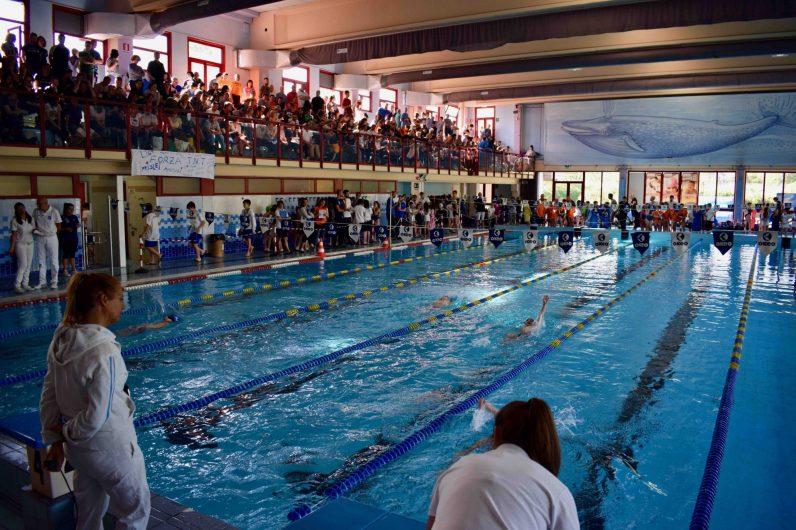 trofeo nuoto Campus Maior piscina camaiore