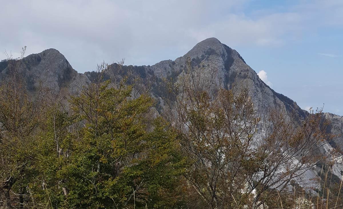 Monte dei Ronchi, un'escursione divertente in Alta Versilia
