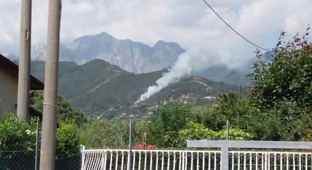 Incendio nei boschi di Ripa