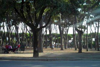 piazza marconi forte dei marmi-1