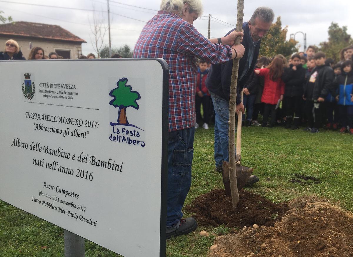 Festa dell'albero 2017, piantiamo per il bene ambientale