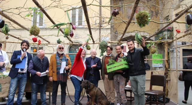 Vittoria ex equo per l'orto creativo a Camaiore