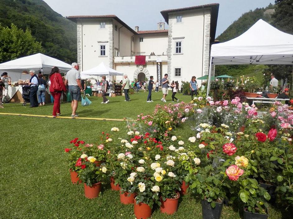 Giardino fiorito a palazzo mediceo la popolare rassegna for Giardino fiorito