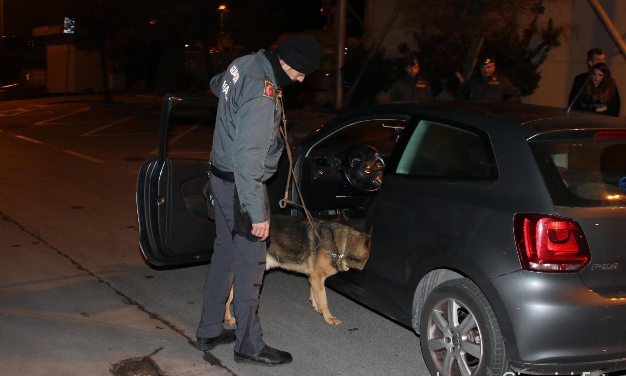 """""""Mezzanotte"""", il finanziere a 4 zampe, scova la droga a Viareggio"""