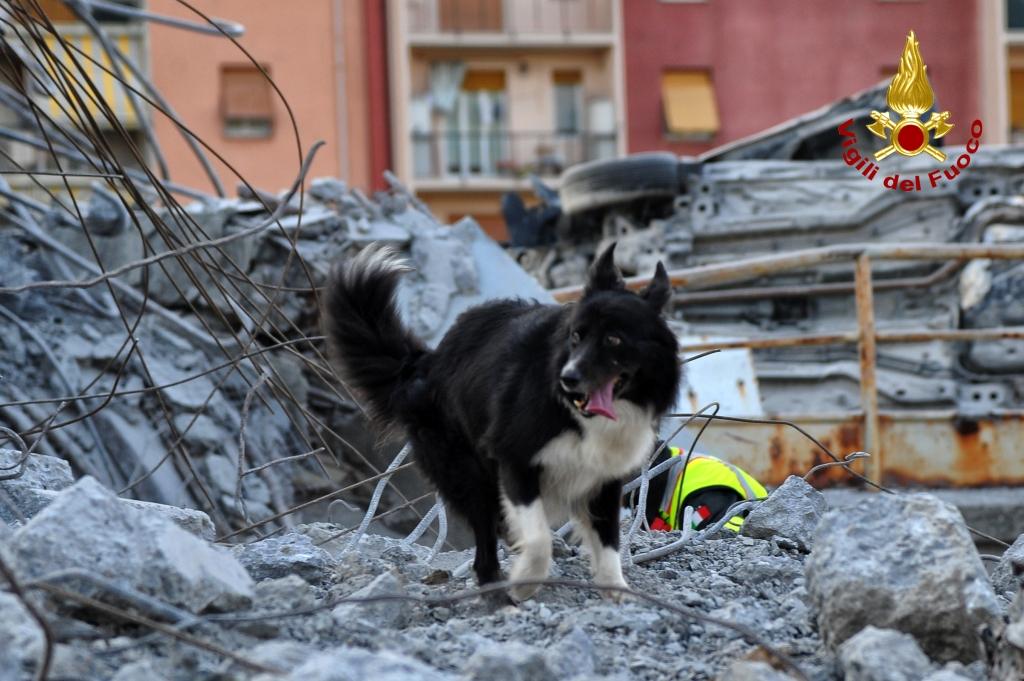 Ponte Morandi, terza notte di scavi per trovare i dispersi: il crollo sarebbe dovuto alla rottura di un cavo