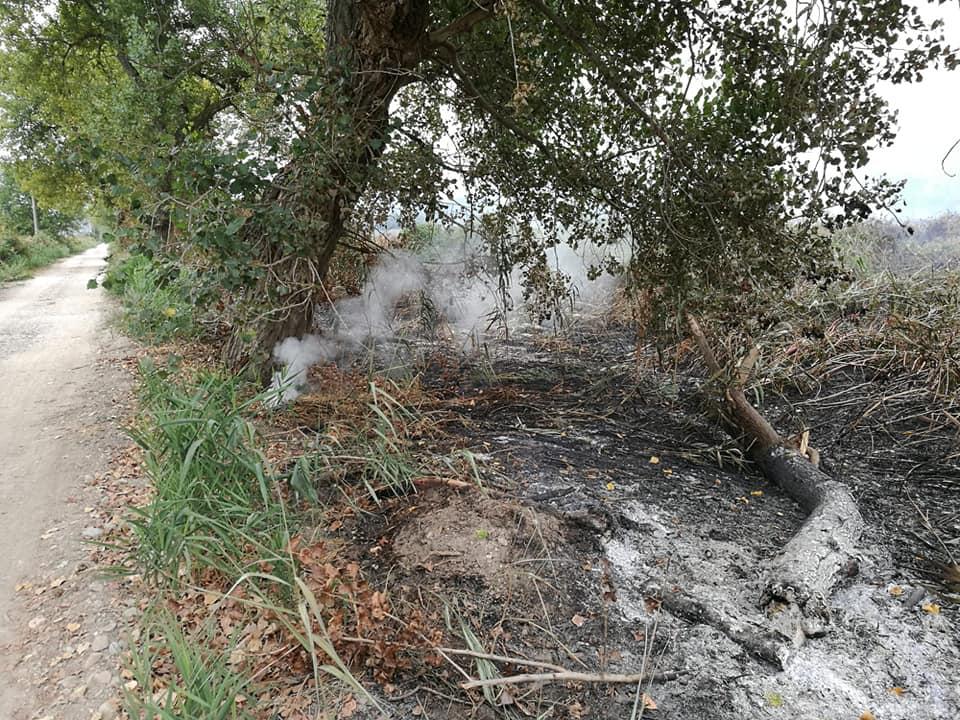 Incendio di torba e cattivi odori anche a Viareggio, il caso arriva in Senato: se ne occupa il movimento 5 stelle