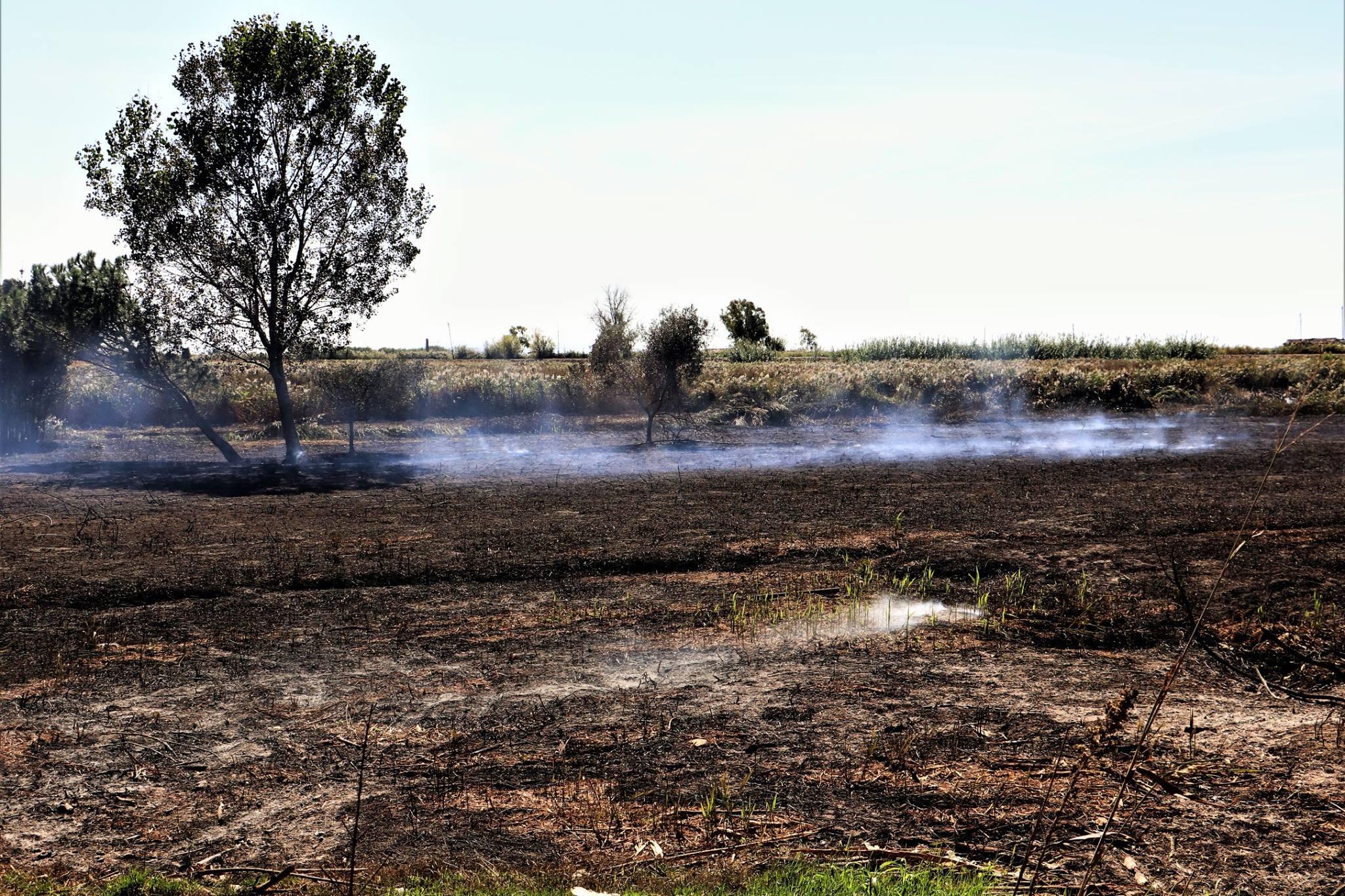 Incendio in padule alle cave di Bozzano, campionamento dei fumi da parte di Arpat