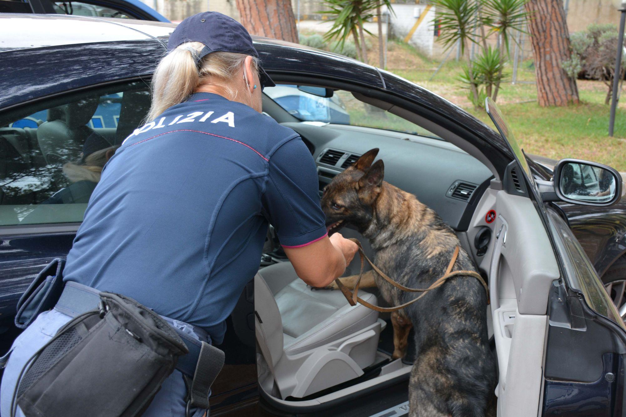 Maxi operazione della Polizia, in azione anche il cane antidroga Kora