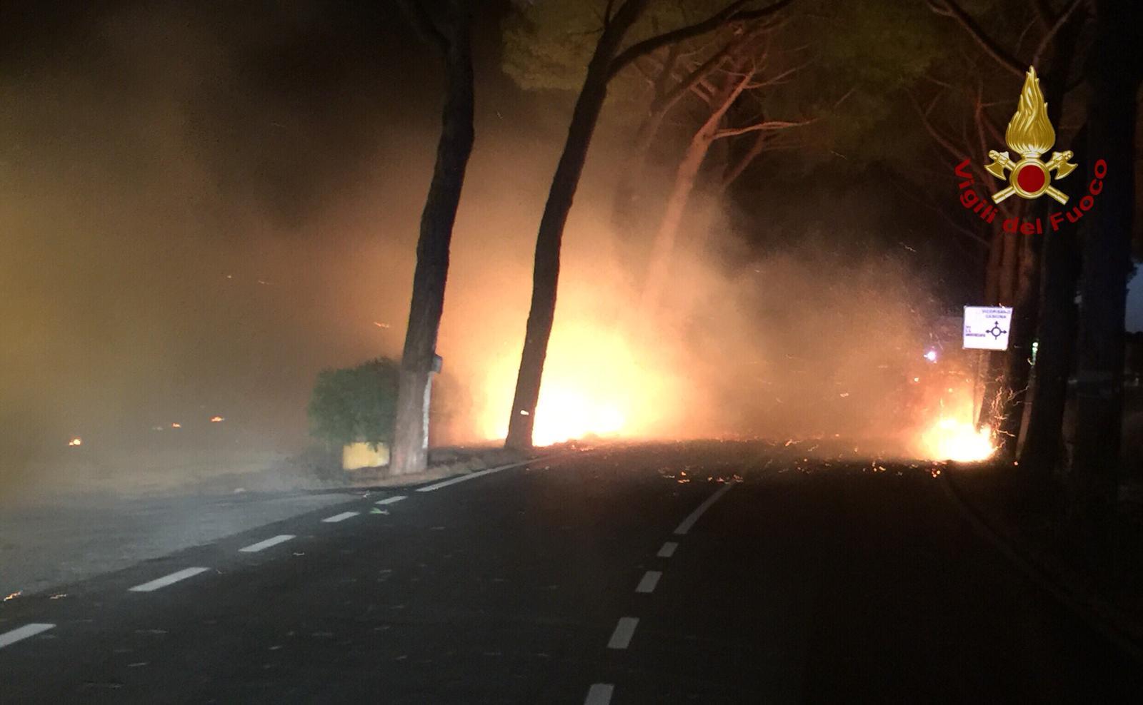 Rogo sul Serra, scenario apocalittico: in cenere uliveti, timore per le abitazioni