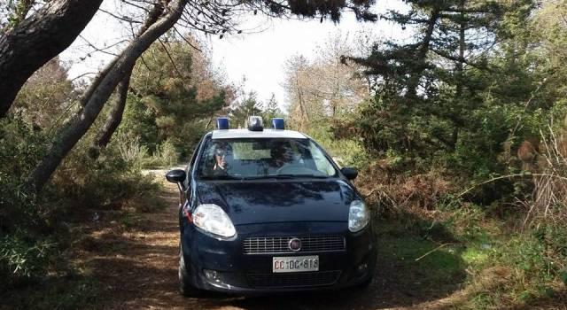 Lotta allo spaccio, un altro blitz in pineta di Levante: arrestato un pusher