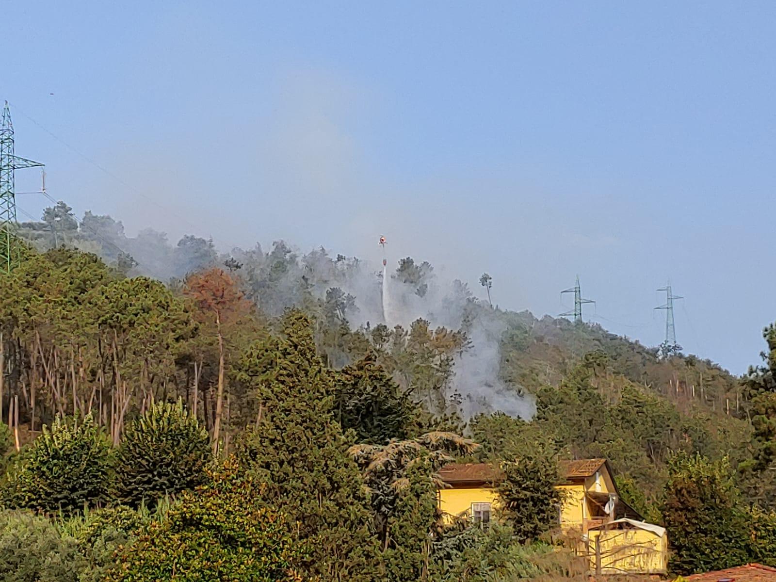 Nuovo incendio sui monti a Camaiore