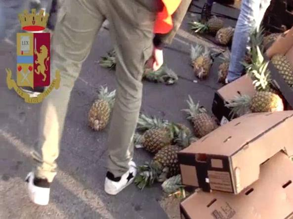 """Operazione """"Miracolo"""", cocaina nascosta tra gli ananas: sequestrati 221 Kg di droga"""