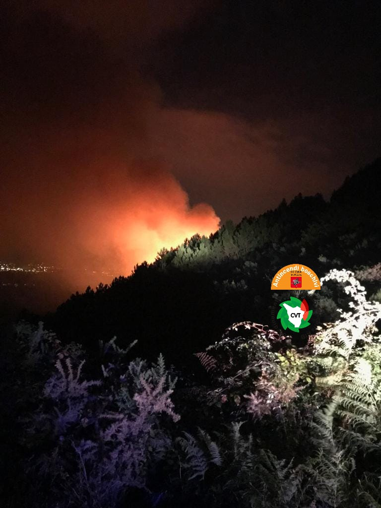 Ancora fuoco sul Monte Serra, questa volta sul lato lucchese: in cenere 4 ettari di bosco