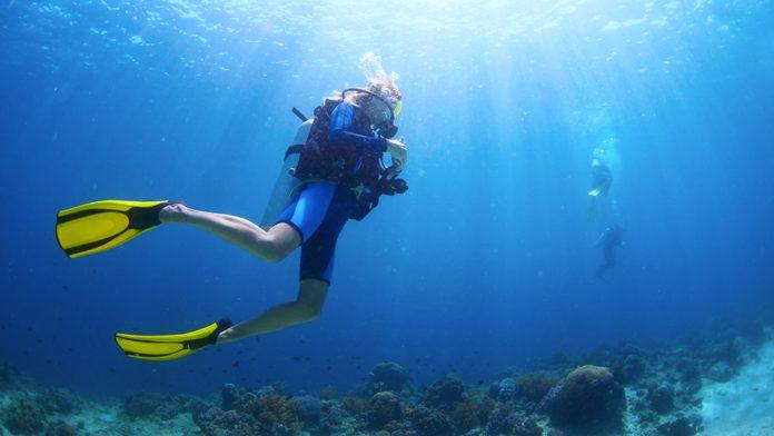 Campionati italiani di fotografia subacquea 2018. A Primo Cardini la medaglia di bronzo e il premio per la miglior foto biologica