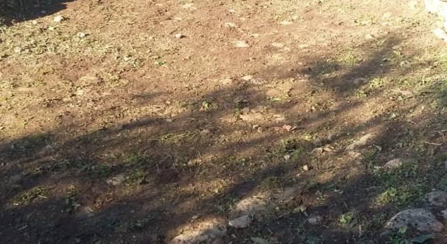 Capriglia, recuperato l'antico sentiero panoramico