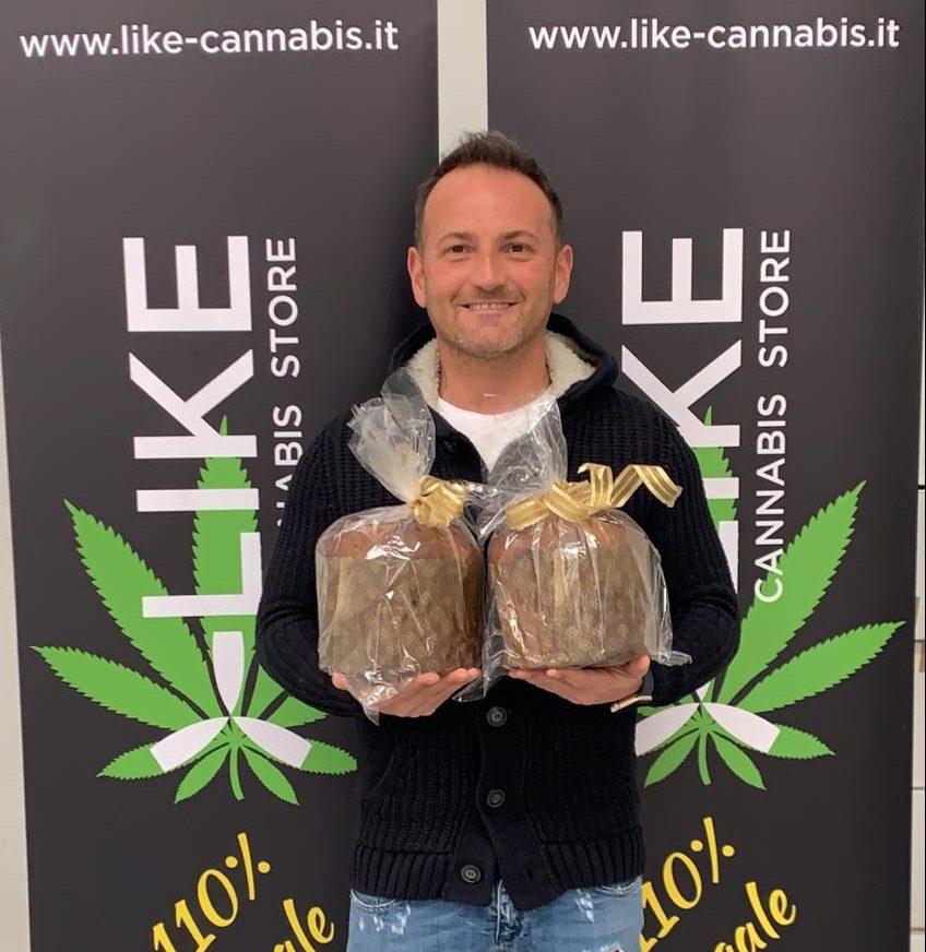 Novità di Natale: il panettone alla marijuana made in Toscana