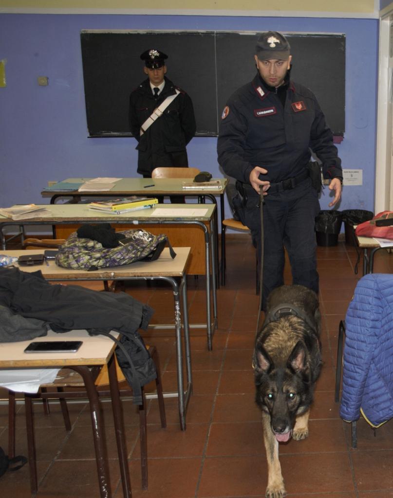 Droga, il cane dei Carabinieri in azione nelle scuole
