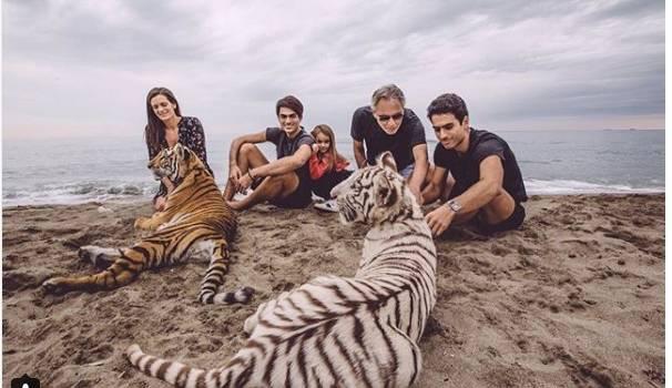 Due tigri in spiaggia a Forte dei Marmi