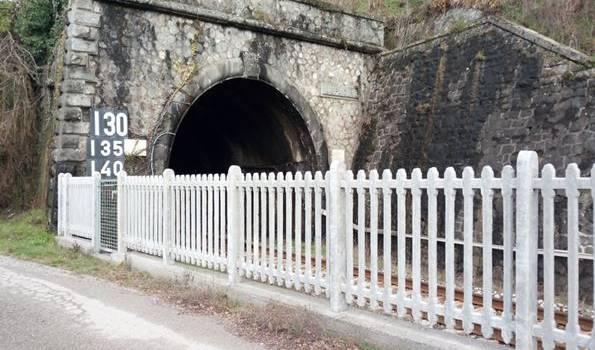Un treno regionale proveniente da Aulla, in direzione Lucca, con a bordo 50 passeggeri, si arresta all'interno della galleria Lupacino: esercitazione della Protezione Civile
