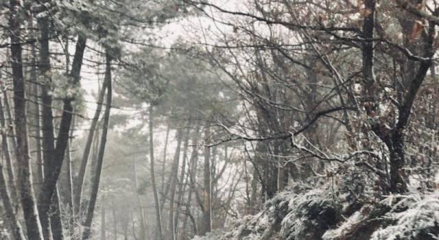 Neve in Toscana, la situazione e le previsioni per le prossime ore