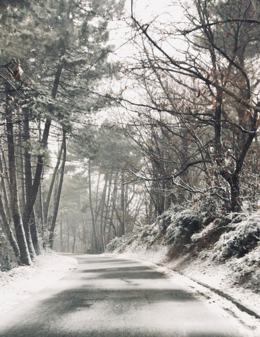 Neve d'aprile, il monte Amiata si sveglia imbiancato (VIDEO)
