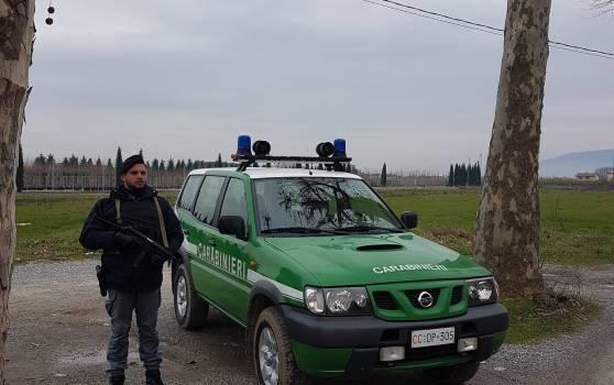 Incendi in Versilia e Garfagnana, scattano le denunce dei Forestali e dei Nas