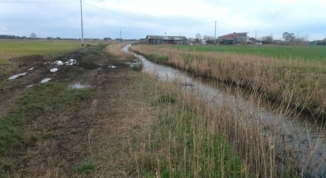 Pulizia dei fossi e dei canali a Piano di Mommio