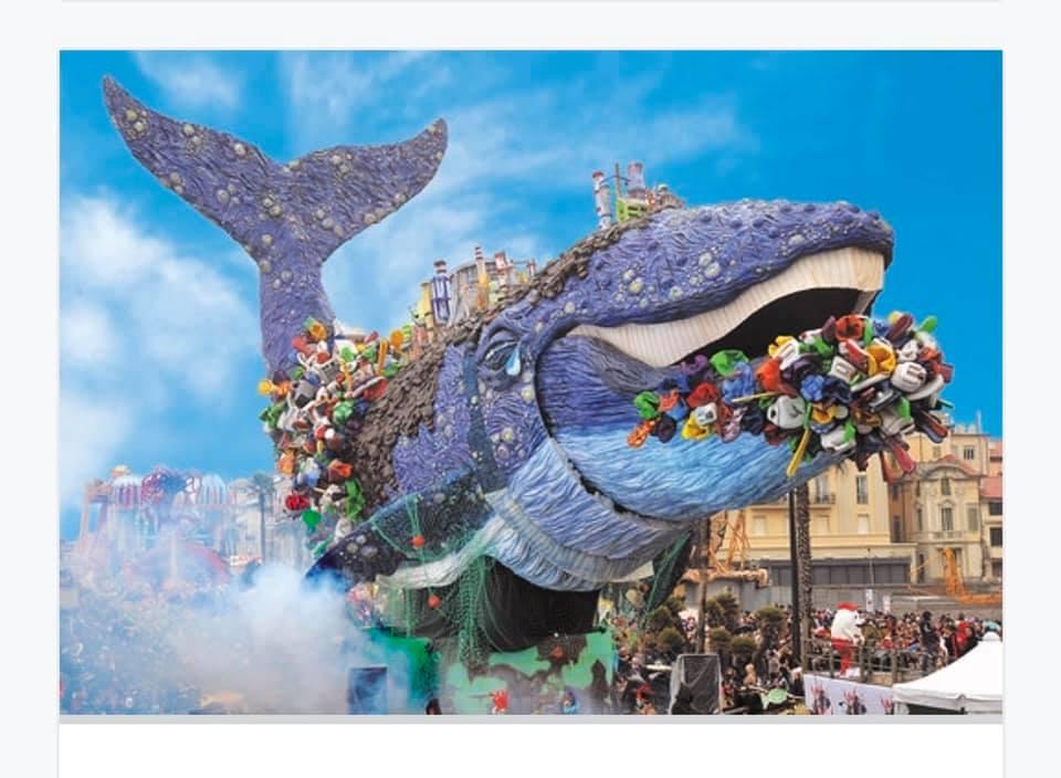 La Balena spopola sul web, il video di Nadia Cupisti fa oltre 40 milioni di visualizzazioni