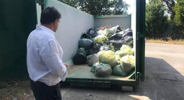 Raccolta del verde: attivato il punto di raccolta mobile al cimitero di Strettoia