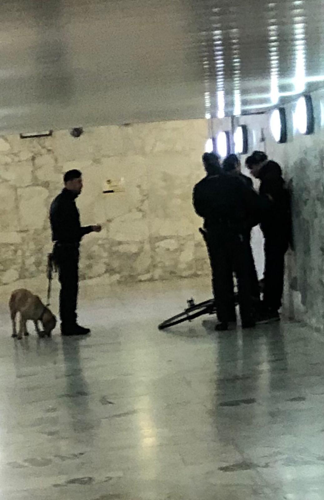 La GdF con i cani antidroga passa al setaccio la stazione